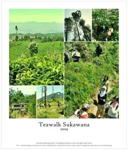 Promo Polaroid 7 Sukawana