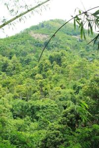 Ridwan Gunung Lalakon & Sadahurip-3